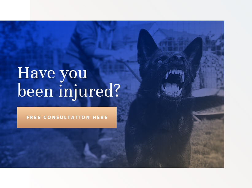Seattle dog bite lawyer - free consultation