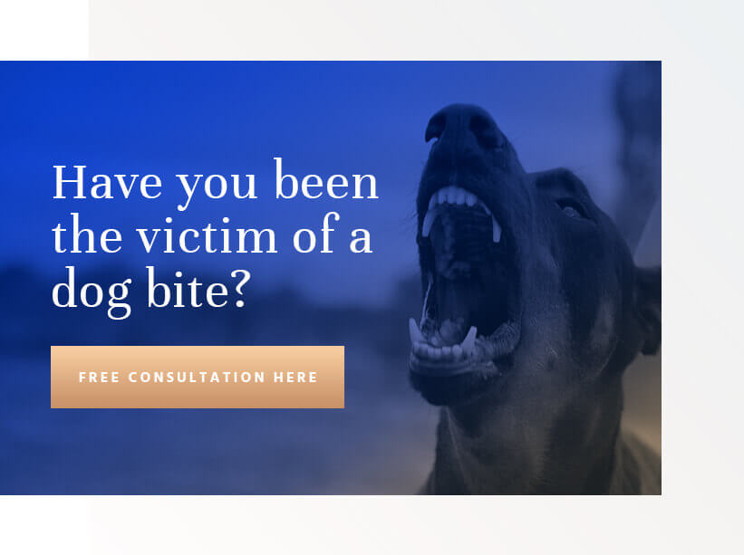 Bellevue Dog Bite Lawyer - Free Consultation